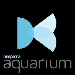 logo-aquarium-nesplora-realidad-virtual-psicologia-innovacion