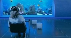 Nesplora Aquarium